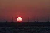Coucher de Soleil sur l'île de Santorin dans les Cyclades Grecques - 217515952