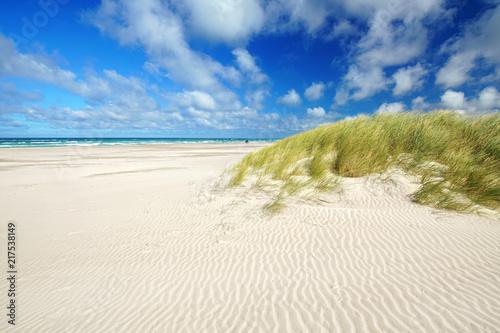 Aluminium Noordzee Freiheit am weiten Strand