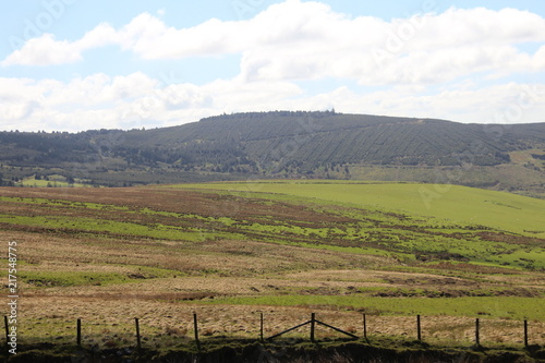 Canvas Pistache Nature Landscape Background