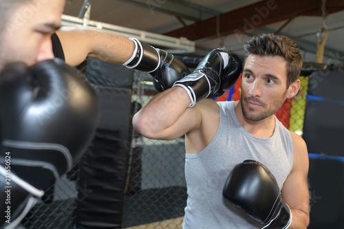 sporty-walki-boks