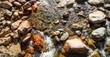 Quadro Rio e rochas