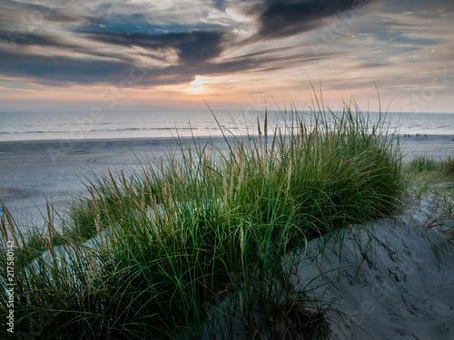 Aluminium Noordzee Sonnenuntergang an der Nordsee. Dünenlandschaft