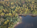 Lake and forest from aboe - 217591593
