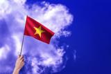 Vietnam flag - Waving flags