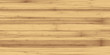 light poplar wood texture background - 217596165