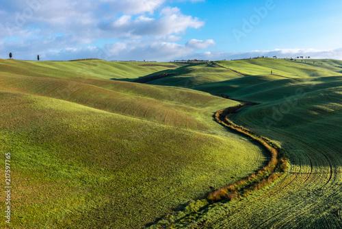 Fotobehang Landschappen Green rolling hills, Tuscany, Italy