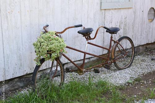 In de dag Fiets Rusty bike with flower basket