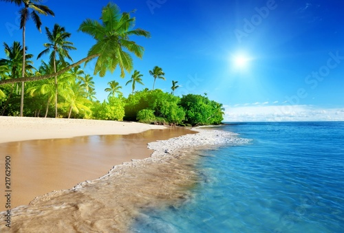 In de dag Tropical strand island sun