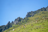 Beautiful mountain peak range with grass and rocks.