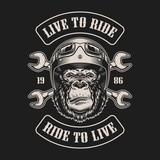 Vintage biker emblem