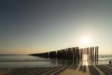 Am Meer, Buhne im Gegenlicht, Sonnenuntergang in Zeeland, Niederlande