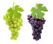 Leinwanddruck Bild - Rote und Weiße Trauben