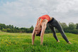 Quadro Peaceful nature. Slim appealing sportswoman stretching her body enjoying peaceful nature atmosphere