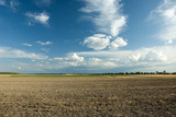 Plowed field, trees on the horizon and white clouds in the blue sky