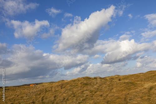 Leinwanddruck Bild Dünenlandschaft, Insel Texel