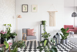 White, brick wall and pink pillow on an armchair with houndstooth pattern in open space living room interior with lots of plants. Real photo - 217716539