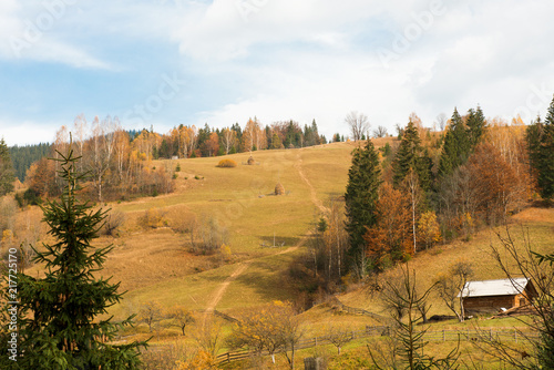 Foto Murales beautiful autumn landscape in the mountains