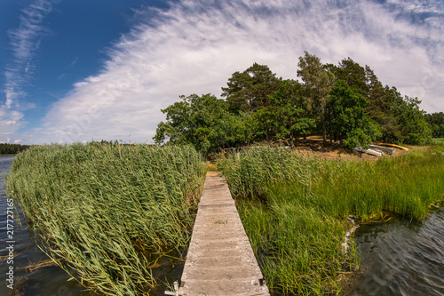 Canvas Zomer Jetty through reed on a lake