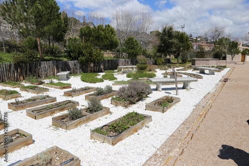 Foto Murales Jardín