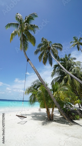 Plexiglas Tropical strand Maldives Palm