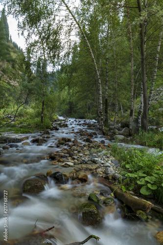 Foto Murales Mountain river in Almaty city