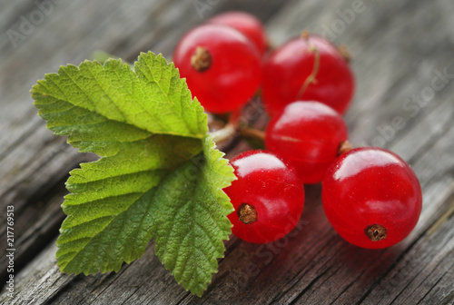 Foto Murales Fresh red currant