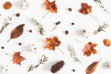 Autumn composition. Pattern made of eucalyptus branches, cotton flowers, dried leaves on white background. Autumn, fall concept. Flat lay, top view - 217778969