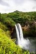 Cascading Jungle Waterfall - 217792910