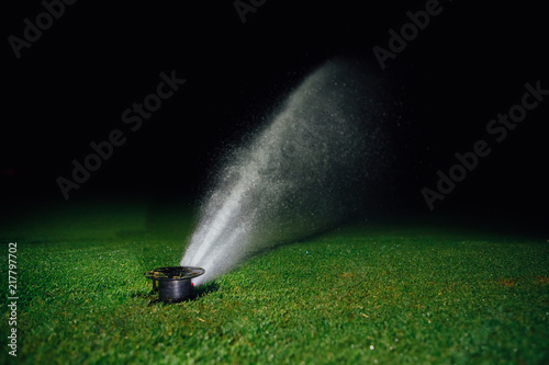 Leinwanddruck Bild automatic lawn sprinkler spraying water over golf course green grass at night