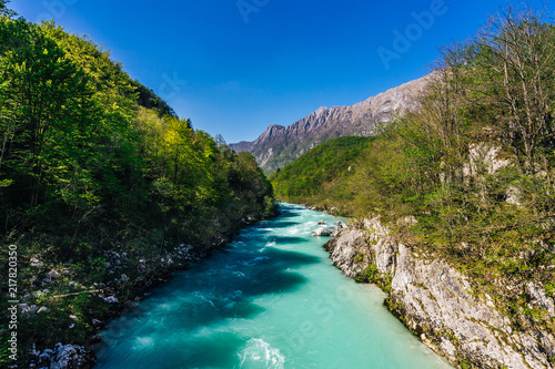 Foto Murales Famous river Soca near city of Kobarid. Beautiful emerald, green and blue wild river Soca, Julian alps, Slovenia. Blue sky, flowing alpine river, green trees and alpine peaks in background.