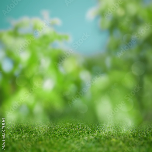 Foto Murales Abstract blured backgrounds with green grass and beauty bokeh