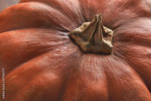 Jesieni pomarańczowy dyniowy zbliżenie