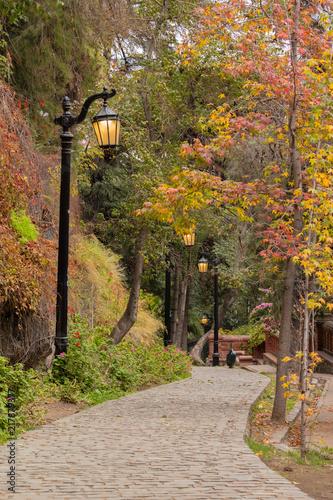 Foto Murales Caminho no outono