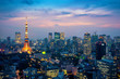 Aerial view of Tokyo cityscape at night in Japan.