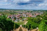 Blick auf Ortenberg im Kinzigtal