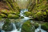 Wasserfall - 217933519