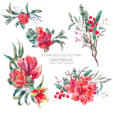 Vector floral set of red flowers, Amaryllis - 217964723