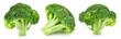 Leinwanddruck Bild - raw broccoli isolated