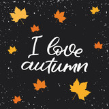 Hand drawn lettering card. The inscription: I love autumn. Perfect design for greeting cards, posters, T-shirts, banners, print invitations.