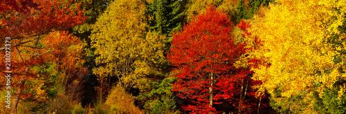 Herbststimmung - 218027373