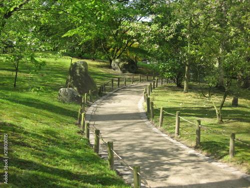 Fotobehang Weg in bos promenade