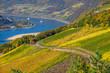 Leinwanddruck Bild - Blick auf den Rhein bei Assmanshausen im Herbst