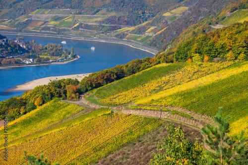 Leinwanddruck Bild Blick auf den Rhein bei Assmanshausen im Herbst