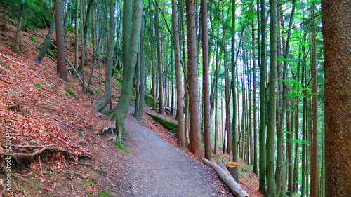 hiking in tegernsee © Mariangela