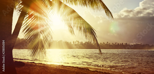 Plexiglas Zonsopgang Tropical sunrise with coconut palm trees. Travel background.