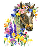 cute foal watercolor illustration. little horse in the summer flowers