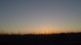 Peaceful sunset behind long grass moving with the wind. Summer in the south of France. - 218085578