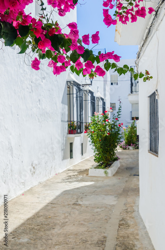 Foto Murales pink flowers of bougainvillea in the streets of vejer de la frontera