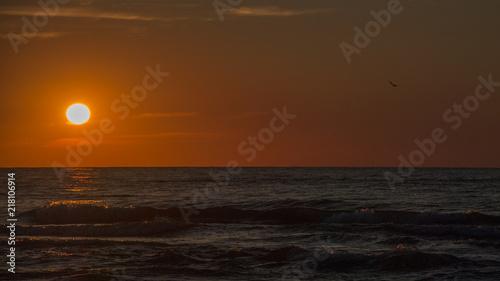 Canvas Zee zonsondergang Seagull flying towards the setting sun