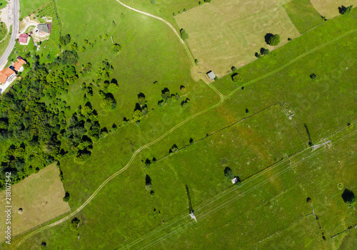 Foto Murales road and green meadow. aerial view